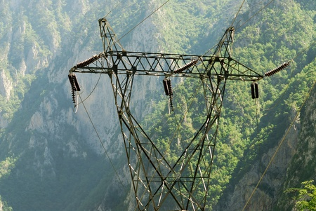 Power transmission line in the wild photo
