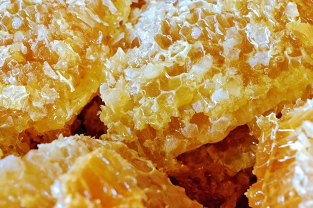 Close up photo of honey comb filled with honey photo