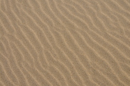 Sand pattern, interesting abstract texture Stock Photo - 12465559