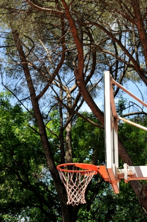 Outdoor basketball dunk with trees in the background photo
