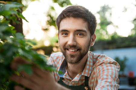Young handsome gardener smiling, looking at camera, taking care of plants. Stock Photo
