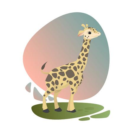Linda bebé jirafa permanecer en hierba verde con hermoso cielo rosado y azul sobre fondo Foto de archivo - 72398359