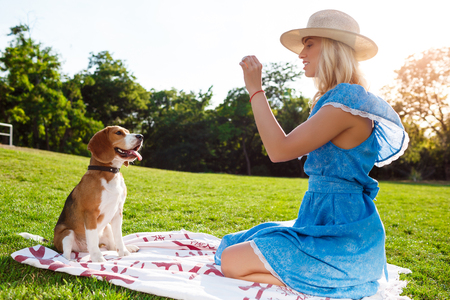 Young beautiful blonde girl in blue dress smiling, walking, playing with beagle dog in park. Stock Photo