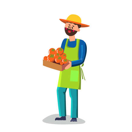 Man Holding Box With Persimmon Vector. Bearded Farmer Boy Persimmon Fruit In Carton Container. Garden Worker Or Smiling Male Grocery Shop Assistant Flat Cartoon Illustration