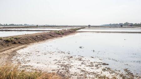 Non harvest season of salt farm. Stock Photo