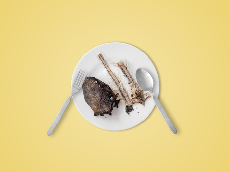 Catfish bones on white dish. Concept of hungry finish and death.