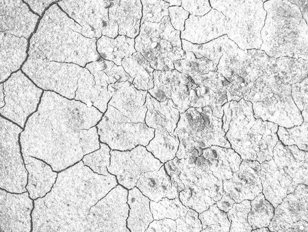 Concept of hungry  thirsty and hot. Dry dirt ground of hot bad summer weather. Stock Photo