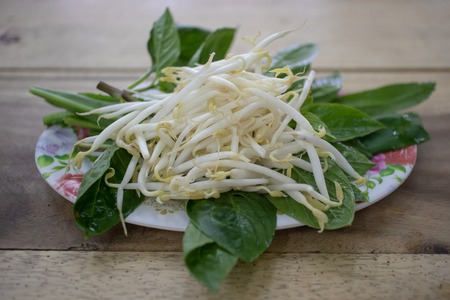 Bean sprouts as side dish of Thai noodle served on a plastic dish.