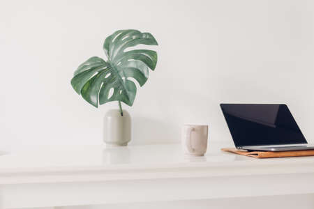 White minimal laptop workspace with plant decoration and coffee.