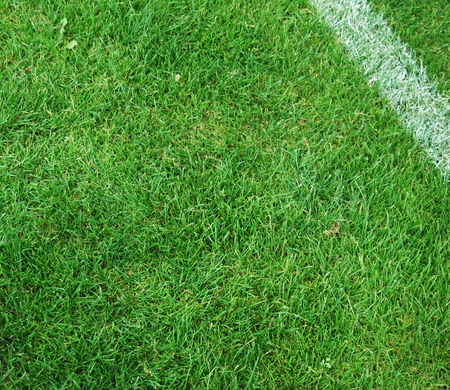 footwork: Soccer Pitch
