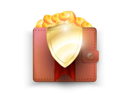 money protecting, 3d shield visualize the protecting of wallet.