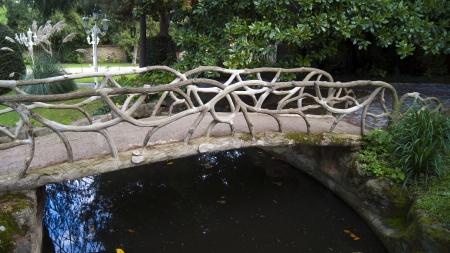arbre: wooden bridge