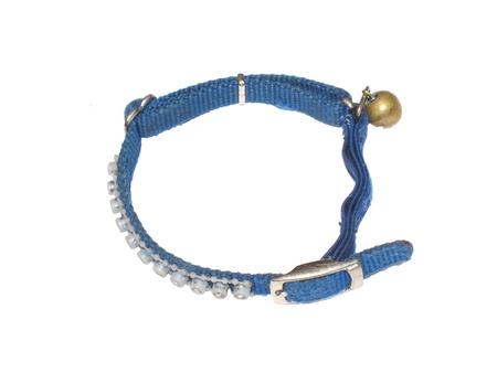 Dog collar 版權商用圖片