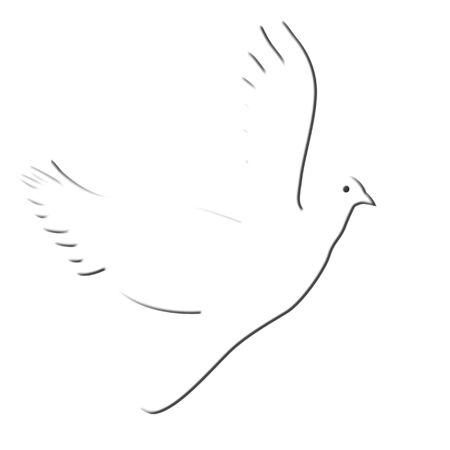 White morning dove illustration on white background Imagens