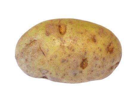 graden: Whole raw potato photo Stock Photo