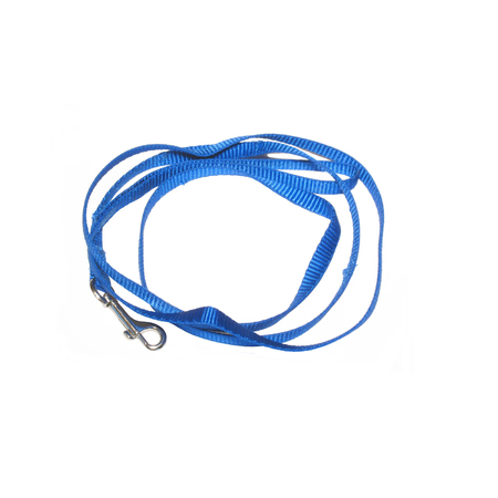 metal fastener: Blue coiled dog leash photo on white background Stock Photo