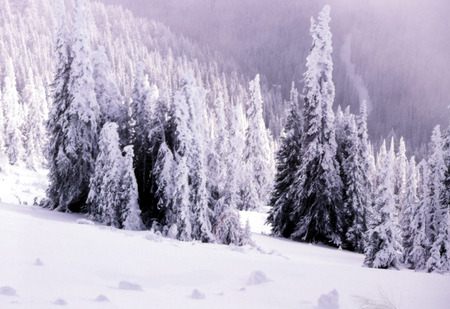 Snow covered foggy mountain scene photo