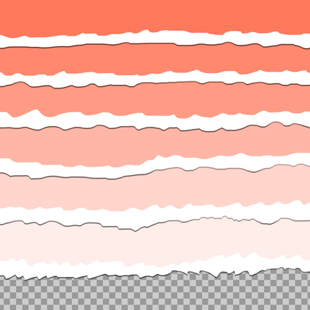 Vector illustration of cut off paper edges