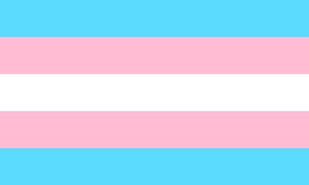Transgender flag - one of a communities of LGBT pride minority. Vector Illustration