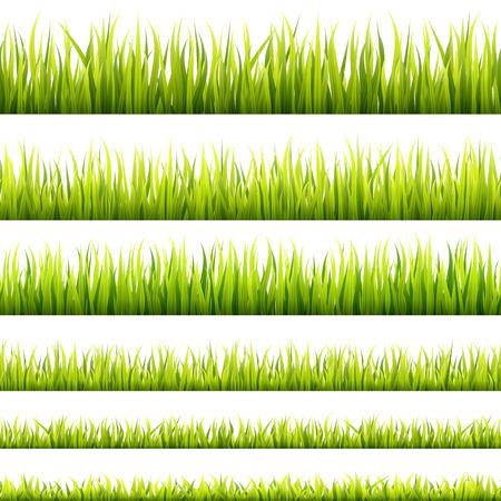 Brotes de hierba de primavera fresca y verde y pancartas sin costuras de crecimiento a base de hierbas. Panorama de césped de primavera en la luz del sol. Líneas de follaje para pies de página y decoraciones de sitios web