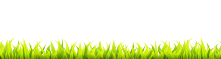 Bright springtime lawn banner. Seamless summer or spring grass decoration. Fresh greenery height