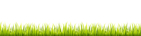 Seamless summer grass panorama. Green springtime herbal lawn. Field or meadow horizontal decoration lines