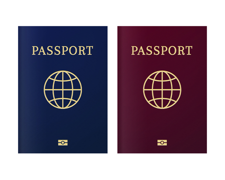 International biometric passport cover page. Blue and red top page of a citizen ID document Ilustrace