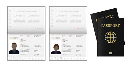 African or Afro-American passport. Citizen id template 向量圖像