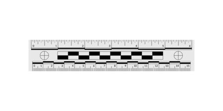 Forensic ruler for measuring crime evidence and gathering a clues 向量圖像