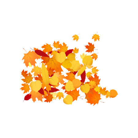 Pile of fallen leaves. Heap of orange, yellow and red autumn leaves. Illustration