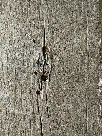 rusty nail: Close-up of Brown Wooden Background with Rusty Nail