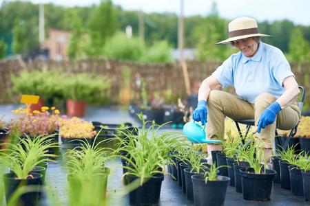 Portrait of happy senior woman enjoying work in garden watering flower pots outdoors