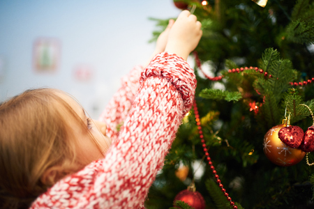 Decorating Bushy Christmas Tree Stock Photo