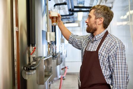 Geconcentreerde inspecteur die kleur van bier controleert bij fabriek Stockfoto - 95561103