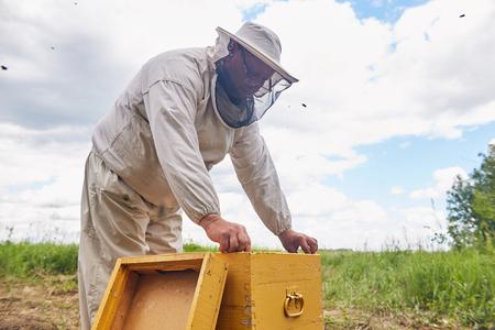 Senior Beekeeper in Apiary Stock Photo - 100055161