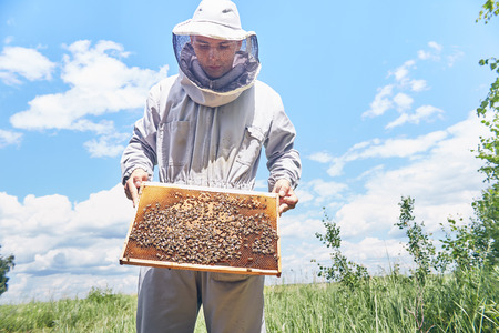 Young Apiarist Holding Hive Frame