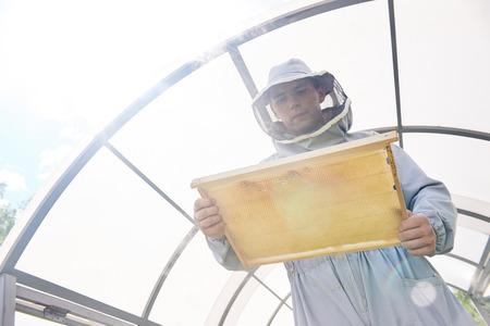 Modern Apiarist Collecting Honey Stock Photo