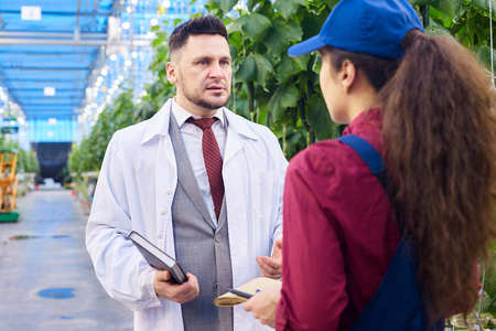Handsome Scientist Talking to Worker in Greenhouse Stock Photo