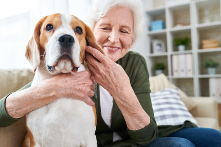 Gelukkig senior vrouw knuffelen hond Stockfoto