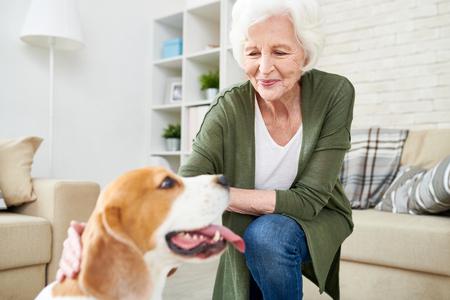 Mujer mayor, con, perro