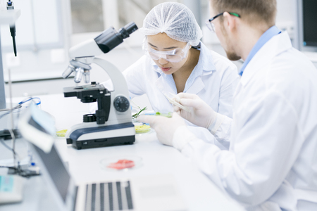 Team of Scientists Working in Laboratory Stock Photo