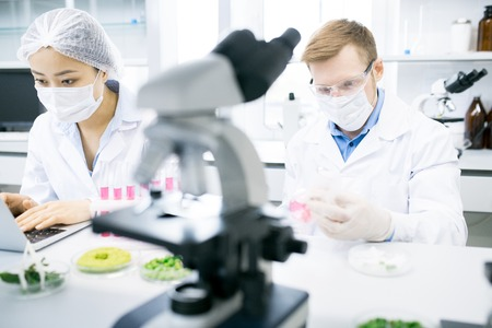 Two Scientists Doing Research in Lab