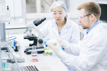 Team of Scientists Doing Research Stock Photo