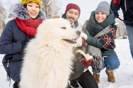 Young People Playing with Dogs in Winter