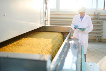 Taller de producción de alimentos a la luz del sol Foto de archivo