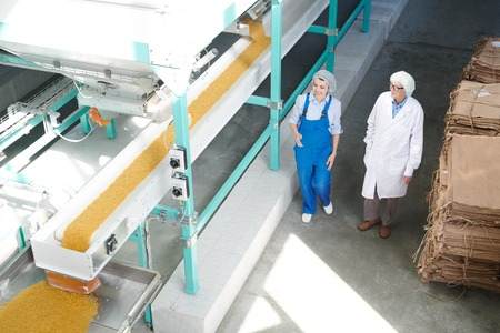 Workers at Food Factory Background