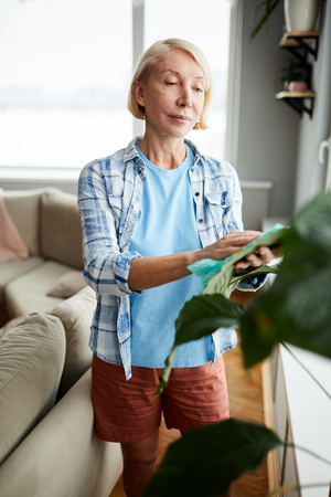 Attractive woman taking care of houseplant
