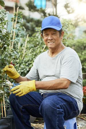 Senior man trimming plants Stockfoto