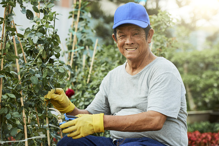 Positive man cutting plants in garden Stock Photo