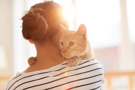 Dueño abrazando gato jengibre